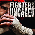 Fighters Uncaged Kinect